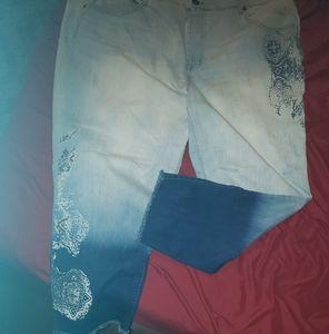 TERRA & SKY sz 24 Lmt Edition Jeans